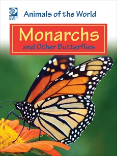 Monarchs and Other Butterflies